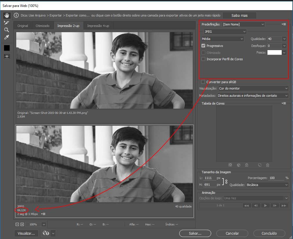 Janela de Configuração do Photoshop para Otimização de Imagens para Internet